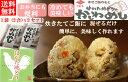 【送料無料】【2合用x2袋セット】炊きたてご飯に混ぜるだけ!冷めても美味しい!お弁