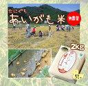 【28年度 新米】【無農薬】たにぐちのあいがも米 2キロ(真空パック)兵庫県浜坂産 2kg P08Apr16