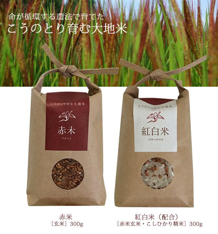 【無農薬コウノトリ米】こうのとり育む大地米赤米玄...の商品画像