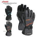 PHENIX 〔フェニックス グローブ〕<2015>Performance Gloves Over PS478GL33〔z〕〔SA〕