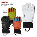 PHENIX フェニックス スキーグローブ 2020 Formula Leather Gloves PF978GL01 F 19-20 旧モデル 〔SA〕