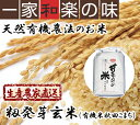 天然有機農法 籾発芽玄米 玄米5kg