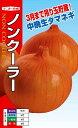 中晩生タマネギ 種 『ノンクーラ』 20ml ナント種苗