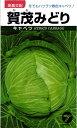 キャベツ 種 『賀茂みどり』 コートL5000粒タカヤマシード