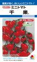 ショッピングトマト ミニトマト 種 『千果』 100粒 タキイ種苗