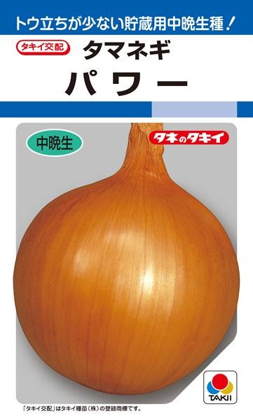 タマネギ 種 『パワー』 3ml(RF) タキイ種苗