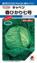 春系及び春キャベツ 種 『春ひかり七号』 2000粒 タキイ種苗