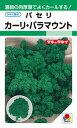 タキイ種苗 パセリ カーリ・パラマウント GF...