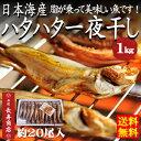 【送料無料】★日本海産ハタハタ一夜干し<1kg>約20枚入【...