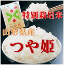 【新米30年産】【送料無料】山形県産 つや姫 玄米 10kg