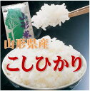 【28年産】【精米・送料無料】山形県産コシヒカリ1等 玄米 30kg