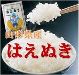 【新米】【】26年山形県産はえぬき 白米 10kg