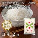 【28年産】【送料無料】【生産者限定特別栽培米】山形県河北町産 つや姫 白米 2kg