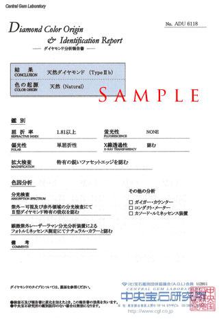 グレーディング・レポート(鑑定書) + サブレ...の紹介画像2