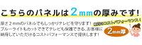 �֥롼�饤�ȥ��åȱվ��ƥ���ݸ�ѥͥ�40��(40�����)��2mm���