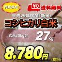 【★】平成29年度産 新米白米27kg【送料無料!一部地域を除く】
