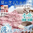 【送料無料/在庫有】 羽毛肌掛け布団 CILレッドラベル 消臭 抗菌 【新技術アレルGプラス きになる臭いも改善】 ダブルロング 300dp以上 洗える 日本製 国内パワーアップ ホワイト ダウン 8