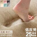 【送料無料】 極厚25mm 低反発ラグ 防ダニ 200×25...