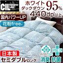 【送料無料/在庫有】 日本製 新基準 CILブラックラベル 440dp以上 羽毛布団 国産 ホワイトダウン95% かさ高180mm以上 [新技術アレルGプラス] セミダブル ロング 7年保証 国内パワ