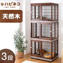 ★12時〜12H全品P5倍★【送料無料】 木製 ハイタイプ ...