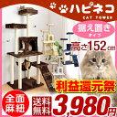 【利益還元祭 3,980円!4/30まで】猫ちゃん喜ぶ...