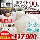 ★期間限定 17,900円!1/20(土)まで★7年保証 【...
