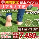 選べる2色 ★期間限定 7,480円!2/24(土)まで★【...