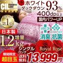 ★期間限定 13,999円!2/24(土)まで★増量1.2キ...