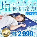 2,999円 塩の力で瞬間冷却 敷きパッ