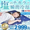 ★在庫限り!2,999円★【あす楽対応】 【送料無料】塩の力...