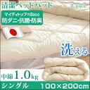 違いは中綿!贅沢1.0kg【送料無料】 日本製 洗える 清潔...