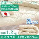 違いは中綿!贅沢1.2kg 【送料無料】 日本製 洗える 清...