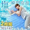 2枚組★クーポンで450円OFF★【送料無料】 瞬間冷却 塩...
