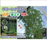 【カード決済OK】その他 タキロンクボタ グリーンアーチ ワイド 1800mm-HCW