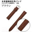 その他 【腕時計用ベルト2本組】本革バンド クロコダイル柄型押し16mmブラウン ds-1317300