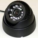 威風堂 赤外線LED搭載 防犯カメラ 69856-AR