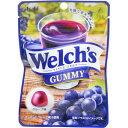 アサヒグループ食品 Welch's(ウェルチ)グミ 42g×8個 E486279H