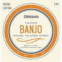 DADDARIO 【10個セット】D'Addario テナーバンジョー弦 ニッケル Medium 4弦 EJ63 0019954910860