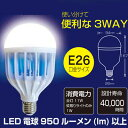 【あす楽対応_関東】イーバランス ROOMMATE LED電...
