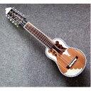 その他 【CHARANGO PRO QUISPE】民族楽器、ボリビア製 キスペ制作のチャランゴ プロ用★ソフトケース付 ds-1921428
