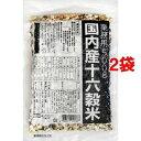 種商 国内産十六穀米 業務用 500g*2コセット 24135【納期目安:2週間】