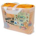 アサヒ興洋 PICNIC&HOME クッションマット グリーンジャンボリー 3畳 6~7人用 180×240cm (レジャーシート) 4901367044217