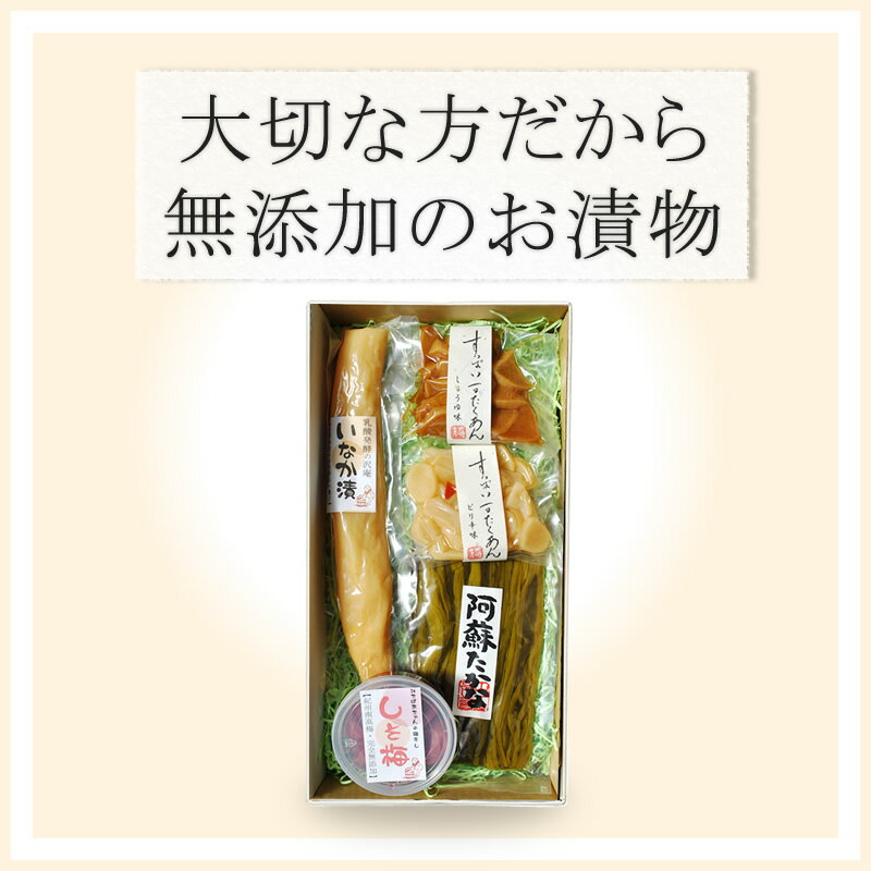 "Additive-free pickle gift ""匠"" of the 漬 けもん shop"