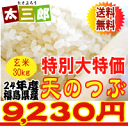 [large special price] 30 kg of grain unpolished rice [smtb-TD] of the sky from 2012 [tohoku] [free shipping] [FoCou1214] [RCP] [gourmet 201212_ food]
