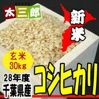 Chiba Prefecture of Koshihikari rice rice 30kg10P05Sep15