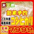 28年 福島県産コシヒカリ玄米30kg【送料無料】
