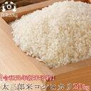 令和元年度 福島県産 コシヒカリ 米 20kg(5kg×4袋...