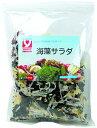 海藻サラダ100g ヤマナカフーズ 乾物 和風調味料 【常温食品】【業務用食材】【8640円以上で送料無料】