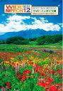 特大サイズフィルムカレンダー ワイドニッポン十二選 日本絶景の旅 日本の名勝十二選 高級フィルムカレ