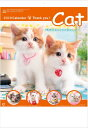 カレンダー 2019年 仔猫 サンキューキャット コンパクトサイズカレンダー 2019年カレンダー 壁掛けカレンダー 猫カレンダー